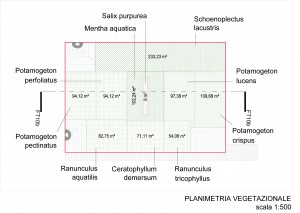 FT10_planimetria-vegetazione